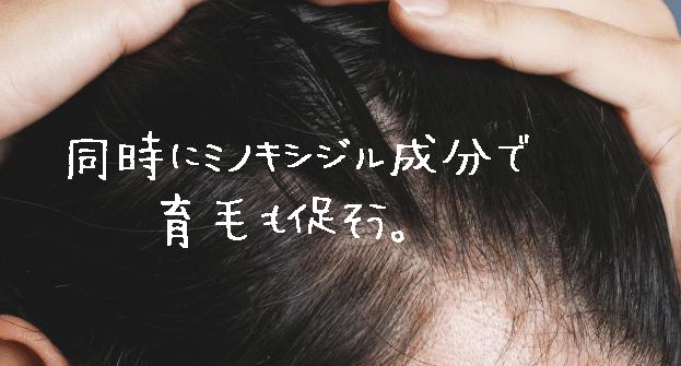 毛髪の質が気になる人はロニタブの併用がおススメ